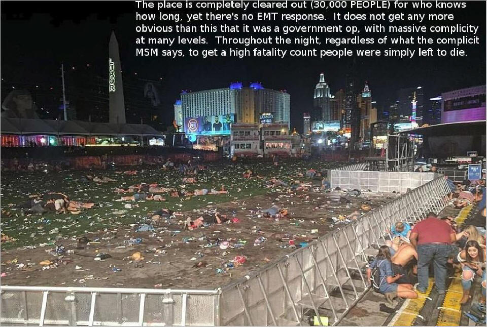 Las Vegas and Parkland False Flags